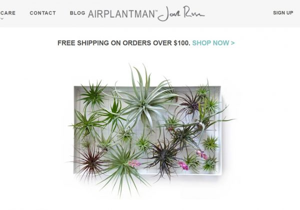 airplantman